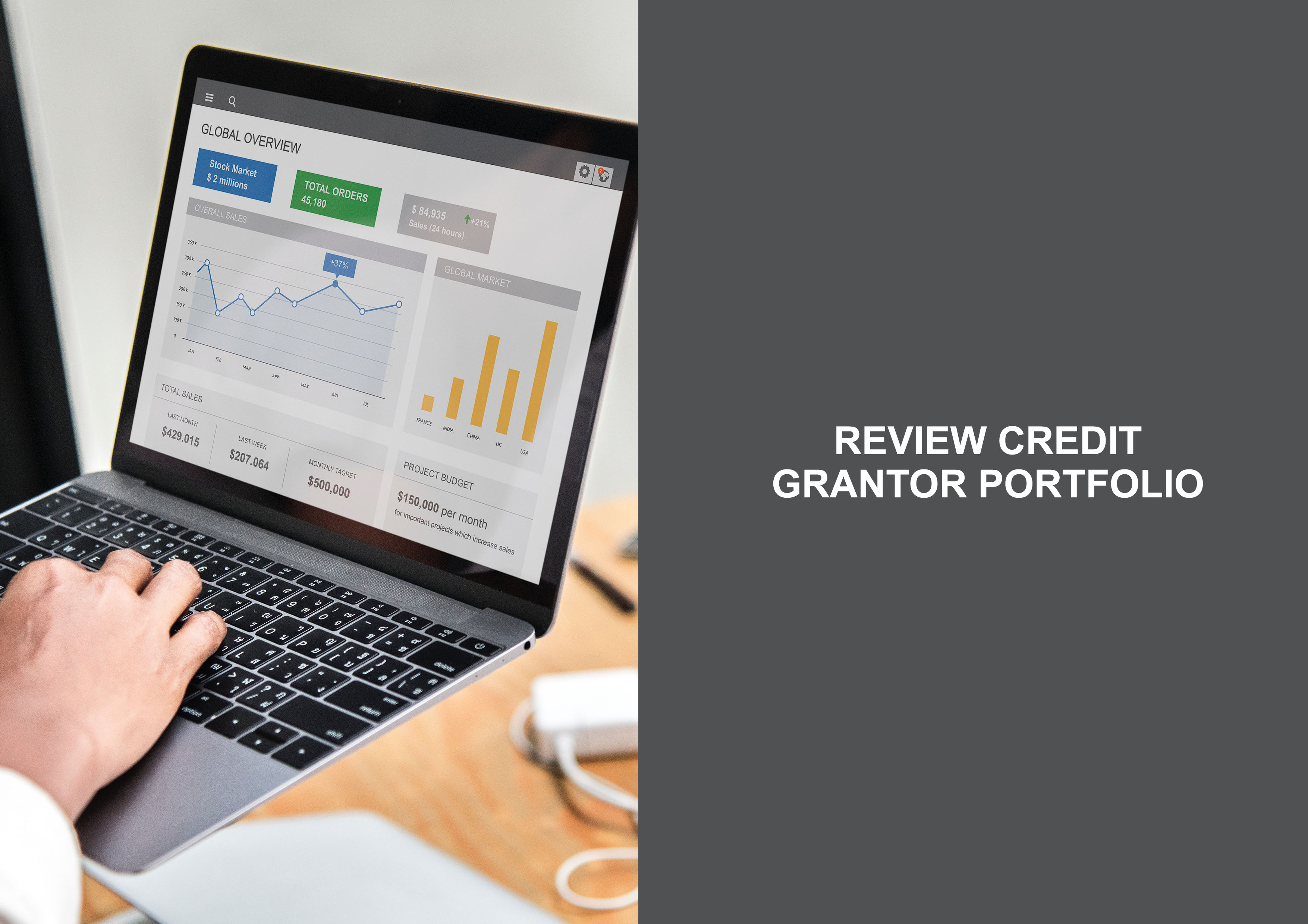 Review credit grantor portfolio